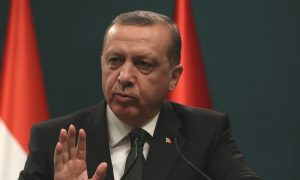 Turkey's Erdogan Urges Parties to Put Differences Aside