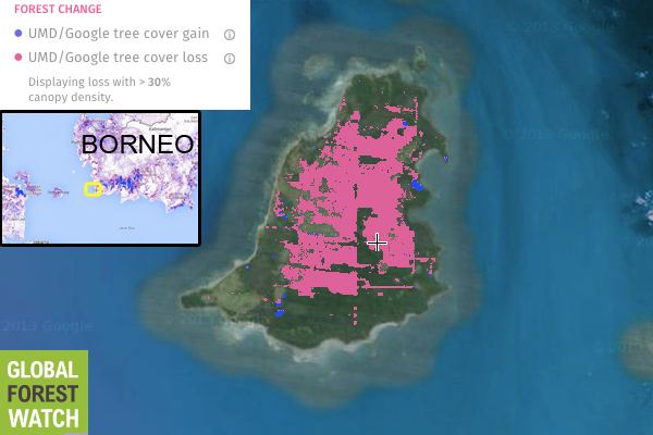 A small island off Kendawangan in West Kalimantan's Ketapang Regency has lost a substantial amount of its tree cover over the past decade, according to Global Forest Watch.