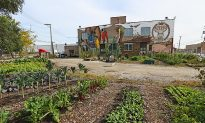 """""""The Plant"""" in Chicago – Blueprint for a Sustainable Future"""