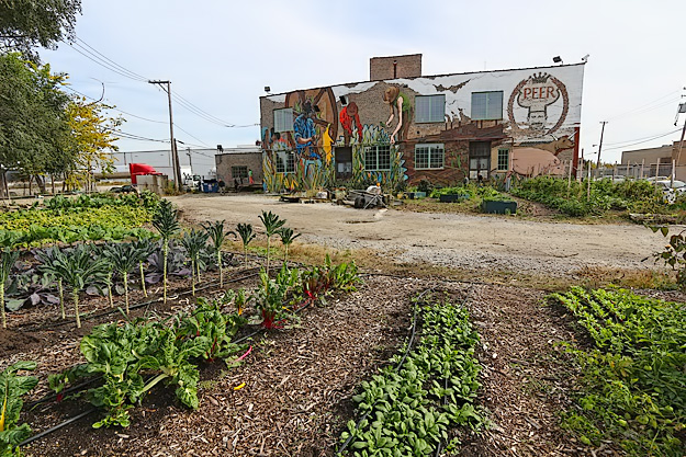 Organic vegetables in the garden supply local restaurants (Barbara Weibel, Hole in the Donut)