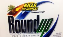 MIT Researcher Suspects Link Between Glyphosate, GMOs and the Autism Epidemic
