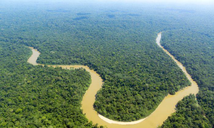 Cononaco river in the Ecuadorian Amazon from the air via Shutterstock*