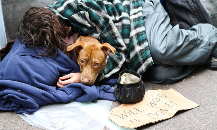 A homeless man sleeps in Zuccotti Park, New York City with his dog on Oct. 12, 2012.  (Samira Bouaou/Epoch Times)