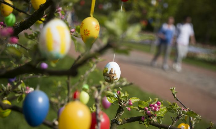 Decorated easter eggs are seen hanging on a tree in Britzer garden park in Berlin on April 21, 2014. (Odd Andersen/AFP/Getty Images)
