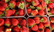Needles Found in Strawberries in Australian City, Police Investigating