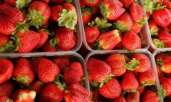 Strawberries after harvest. (Abid Katib/Getty Images)