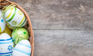 Organic, Cage-Free, Free-Range or Pastured... Sorting Through the Confusion on Egg Labels