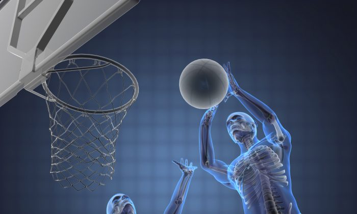 Your bones are cleverer, and more complex, than you might think. (Video Doctor/iStock)
