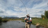 Climate Change to Add Hassles to Trout Fishing