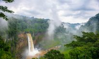 Top Things to Do in Cameroon