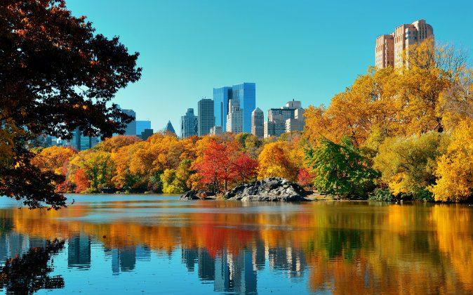 Central Park in autumn in midtown Manhattan New York City via Shutterstock*