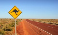 What Not to Do on Your Trip to Australia