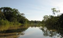Opportunities, Not Oppression, to Stop Illegal Mining in the Peruvian Amazon