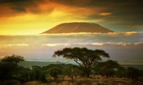 5 Unmissable Tanzanian Experiences for 2015