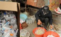 Syringes, Underwear, and the Business of Recyling in China