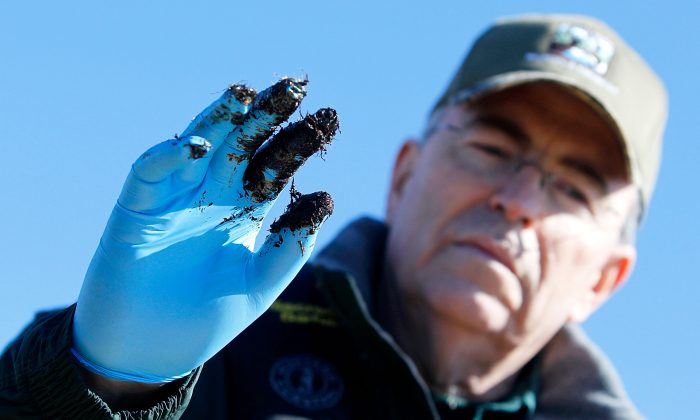 Louisiana Department of Wildlife and Fisheries Secretary Robert Barham holds up an oiled glove after finding new deposits of oiled marshland in Port Sulphur, La., on Jan. 7, 2011. (Sean Gardner/Getty Images)