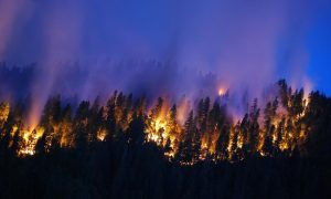 Wildfires in California Spew Greenhouse Gas