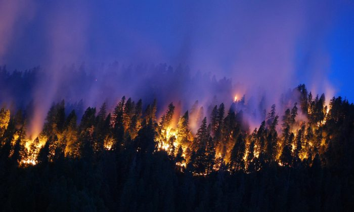 """Projections of more wildfires in the West mean that we need to account for this source of carbon emissions. Meeting the state greenhouse gas targets for 2020 might require a reconsideration of wildland management policies,"" says John Battles. (US Department of Agriculture/CC BY 2.0)"