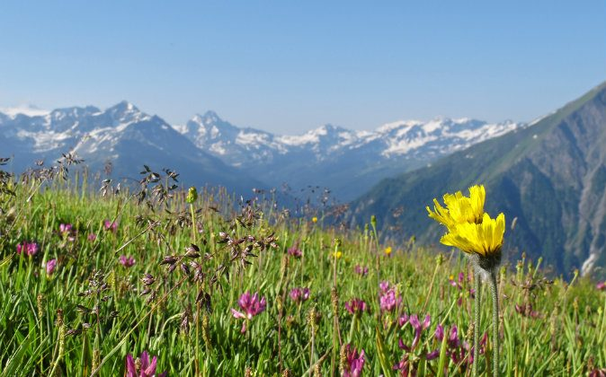 French Alps, view to the Mont Blanc massif from the italian side via Shutterstock*