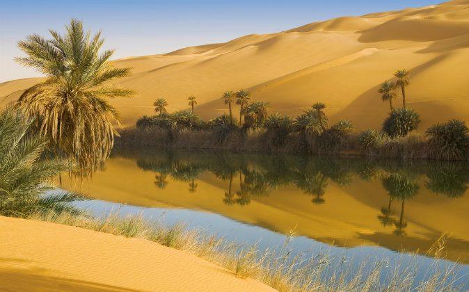 Dunes of the desert Sahara via Shutterstock*