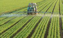 Is Land Fertilized With Sewage Sludge Harmful?