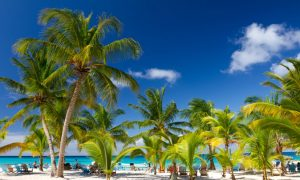 5 Dominican Republic Adventures