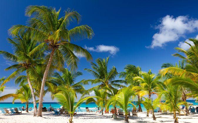 Tropical Beach, Saona Island, Dominican Republic via Shutterstock*