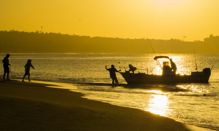 More than 9,000 small-scale fishers make their living on the waters off Baja California Sur. (Nan Palmero/CC BY 2.0)
