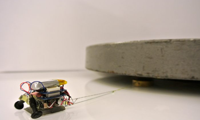 A Micro Tug at work. (Biomimetics and Dexterous Manipulation Lab, Stanford University)