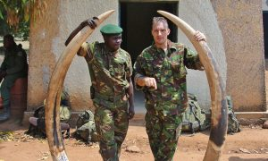 Ranger Killed By Poachers in Park Known for Elephant Deaths