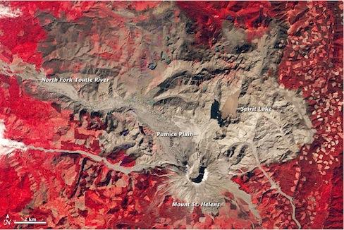 Vegetation on Mount St. Helens (red) after the May 18, 1980 eruption. (USGS)