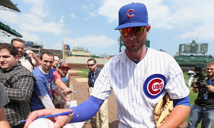 Rookie third baseman Kris Bryant of the Chicago Cubs has four home runs in his last eight games after hitting 43 last year in the minors. (Jonathan Daniel/Getty Images)
