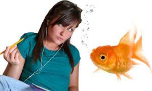 Millennials' Attention Spans One Second Shorter Than Goldfish