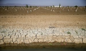 California's Water Paradox: Why Enough Will Never Be Enough