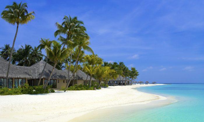 Beach bungalows on a tropical island (TPopova, iStock)