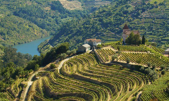 The Douro river (PRG-Estudio, iStock)
