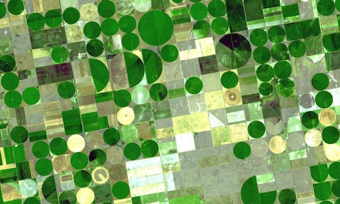 Water makes all the difference for agricultural crops. (U.S. Geological Survey/Flickr, CC BY 2.0)
