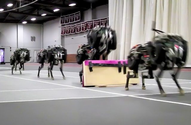 Researchers at MIT created robotic cheetahs that jumped hurdles for the first time. (Haewon Park, Patrick Wensing, and Sangbae Kim)