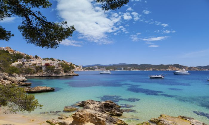 Cala Fornells View in Paguera, Majorca (VICTOR PELAEZ TORRES, iStock)