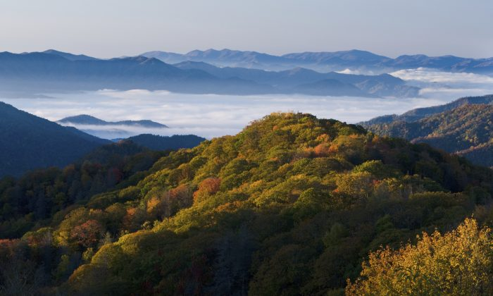 Smoky Mountains National Park (gelyngfjell, iStock)