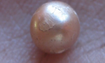 Archaeologists Uncover Rare 2,000-Year-Old Pearl (Video)
