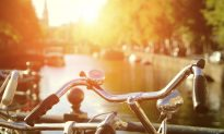 Tripsite Bike Tours Rock the Boat