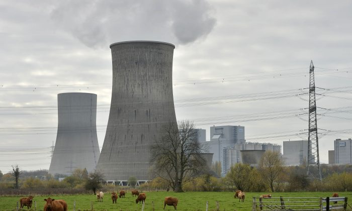 FILE - A Thursday, Nov 14, 2013 photo from files showing cows standing in front of the latest coal-fired power station of German power provider RWE in Hamm, Germany. (AP Photo/Martin Meissner, File)