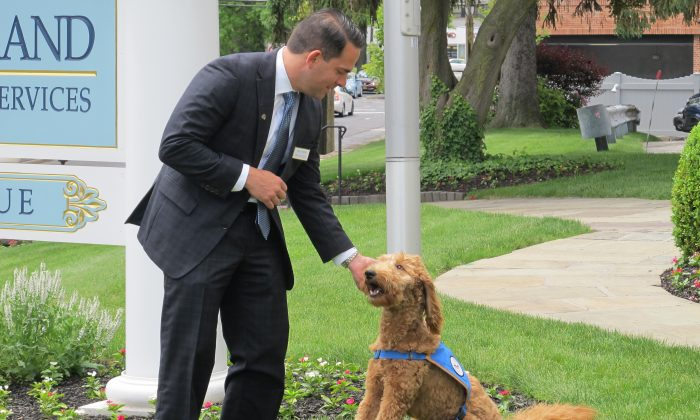 Matthew Fiorillo, owner of the Ballard-Durand funeral home in White Plains, N.Y., plays with his dog Lulu on the funeral home's lawn on Thursday, June 4, 2015. (AP Photo/Jim Fitzgerald)