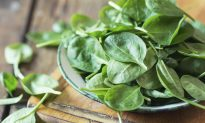 Spinach Recalled Across 10 States After Random Test Finds Salmonella