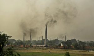 India Worries It Compromised Too Much on Climate Treaty