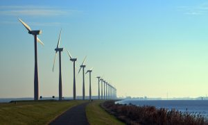 Green Energy Is More Popular If It's the Default