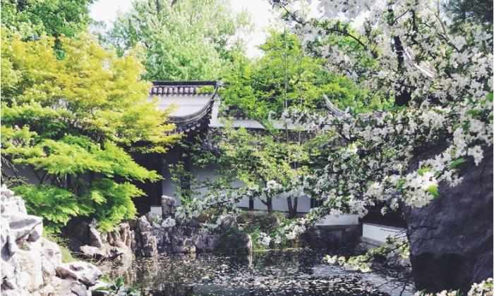 Chinese Scholars Botanical Garden in Staten Island, NY. (Ingrid Longauerova/Epoch Times)