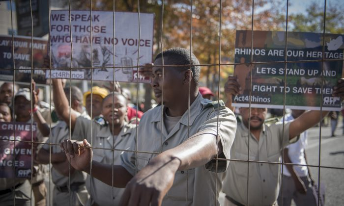 Demonstrators protest outside the African Union Summit, held in Johannesburg, calling for the protection of rhinos by Africa countries. Rhino breeders and game reserve owners took the South African government to court this week to try to overturn its ban on the domestic trade of rhino horn. (AP/Shiraaz Mohamed)