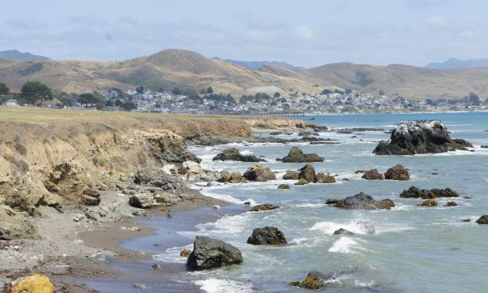 The Estero Bluffs State Park in San Luis Obispo County, with the town of Cayucos in the distance. The park, which provides habitat for several endangered species, features a variety of scenic sites along its coast. (Beverly Mann)